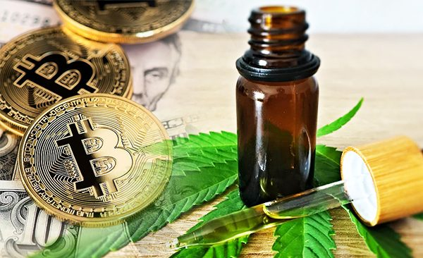 How to Buy CBD Oil with Bitcoin